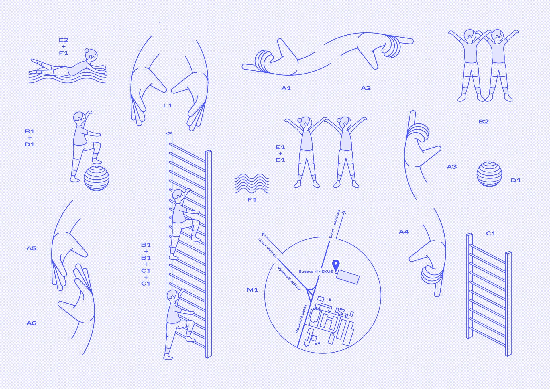 MOJŠA, fyzioterapia, ilustrácia, grafický dizajn